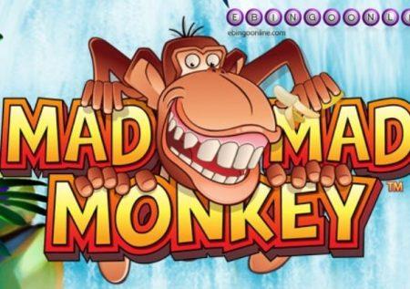 Aprende a jugar la Slot Mad Mad Monkey